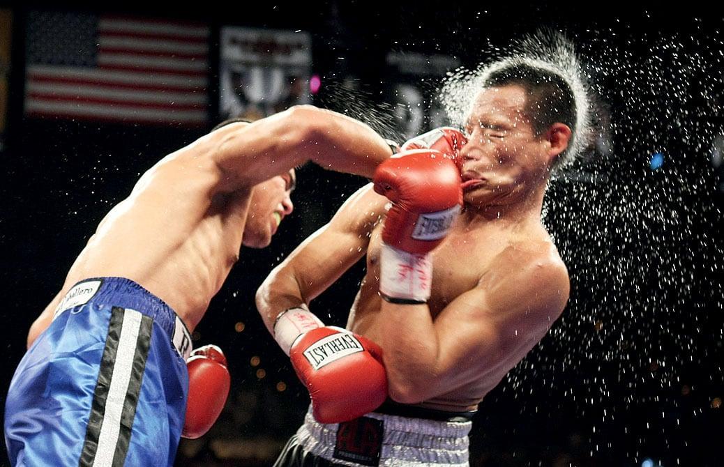 Надписью любимый, смешные картинки боксера